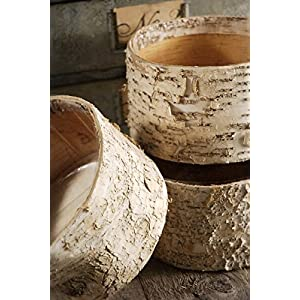 Birch Bark Pots Round 7.5 x 4 - Excellent Home Decor - Indoor & Outdoor 6
