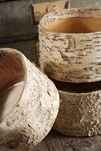 - Wayfair Birch Bark Pots Round 7.5 x 4