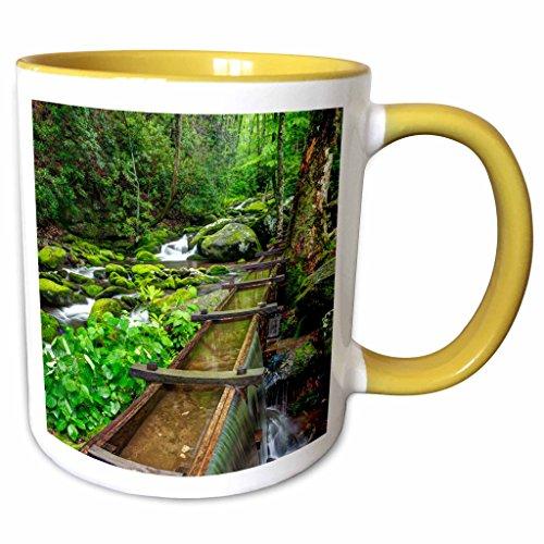 3dRose Danita Delimont - Mills - Tub Mill, Great Smoky Mountains, Tennessee, USA - US43 BJY0012 - Jaynes Gallery - 11oz Two-Tone Yellow Mug (mug_146560_8) Tennessee Beverage Tub