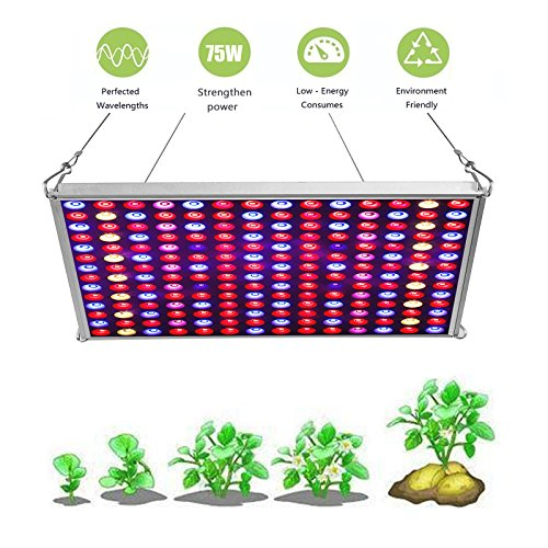 $30.99 LED Grow Light for Indoor Plants,YGROW Upgraded 75W Growing Lamp Light Bulbs with Exclusive Full Spectrum for Greenhouse Hydroponic Plants from Seeding to Harvest 2019