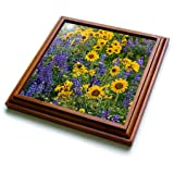 3dRose trv_279647_1 Springtime Bloom Trivet with Tile, 8 by 8''