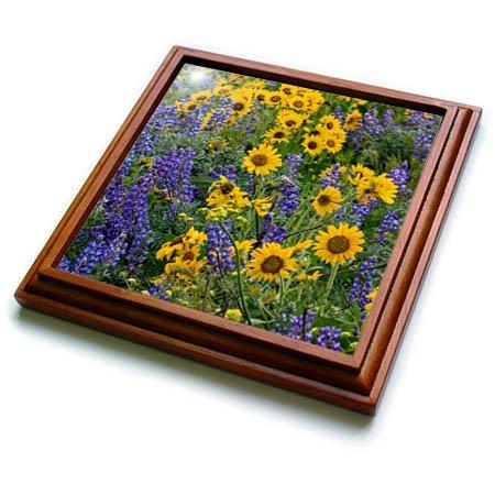 3dRose trv_279647_1 Springtime Bloom Trivet with Tile, 8 by 8''