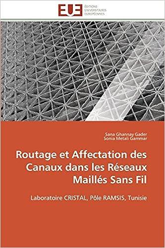 Routage et Affectation des Canaux dans  les Réseaux Maillés Sans Fil: Laboratoire CRISTAL, Pôle RAMSIS, Tunisie pdf, epub ebook