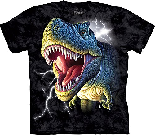 The Mountain Little Boys' Youth Lightning Rex Shirt, Black, - Face Face Big Small