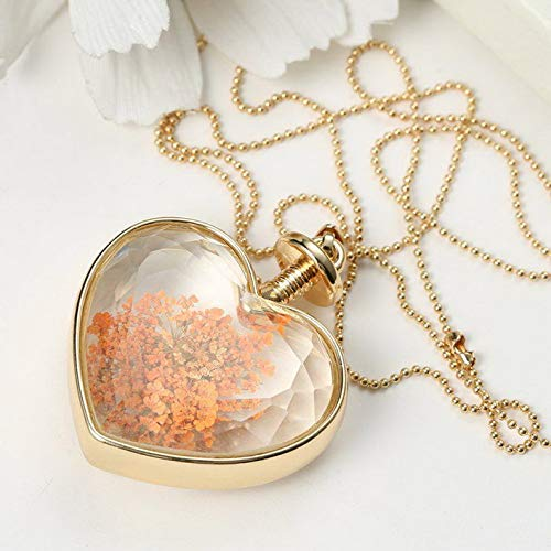 Kaputar Natural Clover Dried Flower Gold Heart Glass Locket Pendant Necklace Mom Jewelry | Model NCKLCS - 18508 |