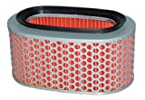 Hiflofiltro HFA1710 Premium OE Replacement Air Filter