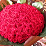 プリザーブドフラワー 赤バラ 100本 花束