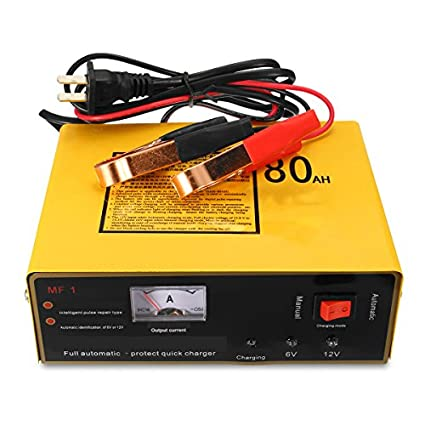 HobbyAnt 120 W 6 V 12 V 80 AH cargador de coche para ...