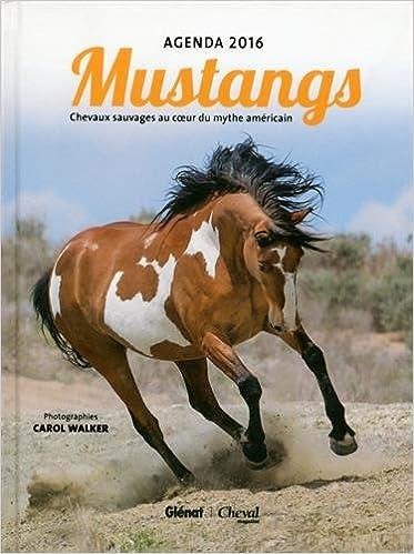 Lire en ligne Agenda cheval 2016 pdf ebook