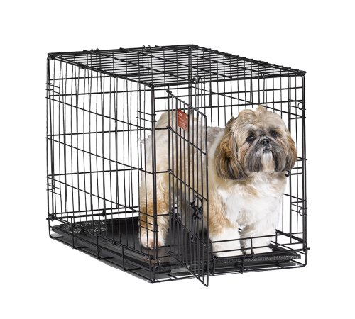 MidWest 24' iCrate Folding Metal Dog Crate w/ Divider Panel, Floor Protecting 'Roller' Feet & Leak-Proof Plastic Tray; 24L x 18W x 19H Inches, Small Dog Breed