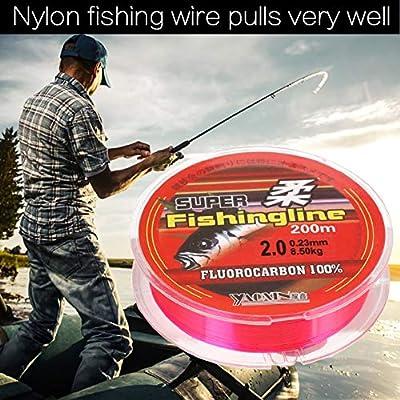 Leezo - Sedal de pesca (nailon, 200 m, revestimiento de ...