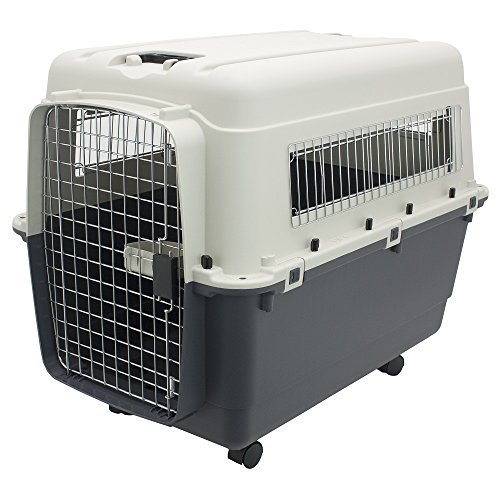 Plastic Kennels – Rolling Plastic Airline Approved Wire D...