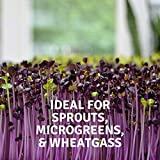 Handy Pantry Micro-Mats Hydroponic Grow Pads