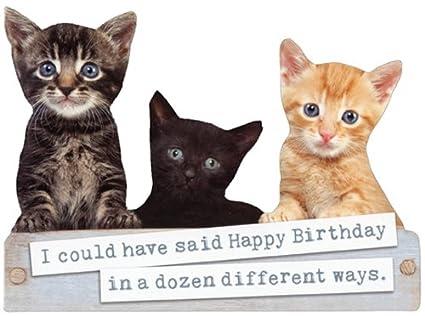 Amazon Box Of Kittens Die Cut Paper House Cute Cat Birthday