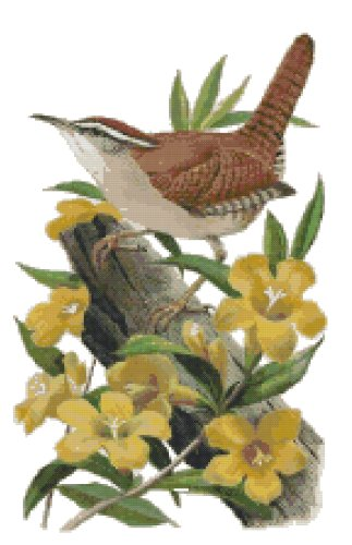 South Carolina State Bird (Carolina Wren) and Flower (Yellow Jessamine) Counted Cross Stitch Pattern