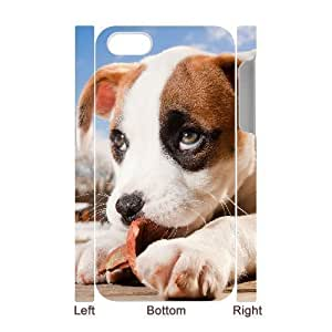 3D Bumper Plastic Case Of Pit Bull Terrier customized Case For Iphone 4/4S Cover