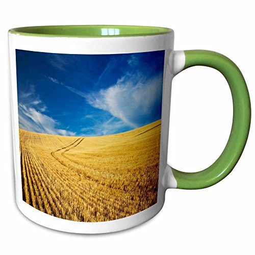3dRose Danita Delimont - Farms - Farm Fields, Harvest Wheat, Palouse, Washington, USA - US48 TEG0425 - Terry Eggers - 11oz Two-Tone Green Mug (mug_148727_7)