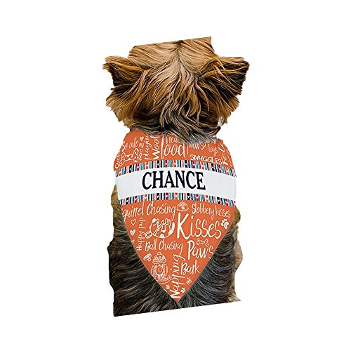 GiftsForYouNow Orange Dog Doodle Personalized Pet Bandana ()