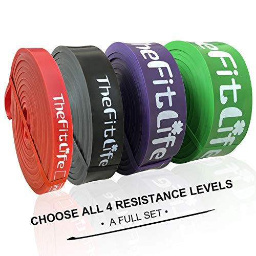 TheFitLife Resistance Pull Up Bands - Pull-Up Assist Exercise Bands, Long Workout Loop Bands for Body Stretching, Powerlifting, Fitness Training, Bonus Carrying Bag and Workout Guide (Full Set)