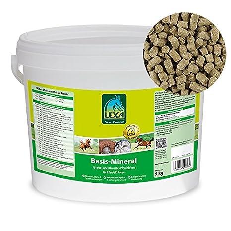 Comida a base de minerales de Lexa, 9 kg: Amazon.es ...