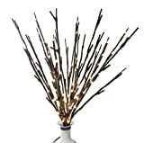 BABALI Lighted Twig Branches 20 Inches 100 Led Battery and Electric/Corded Dual Power Brown Wrapped Artificial Willow Warm White Lighting Branch Lights Crafts with Timer