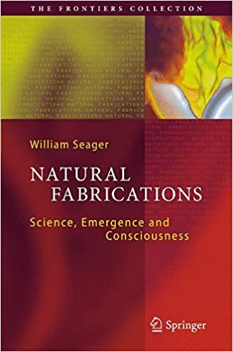 Natural Fabrications: Science, Emergence and Consciousness (The