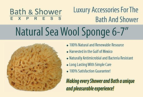 The 8 best bath sponges natural