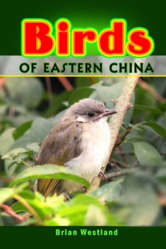 birds-of-eastern-china
