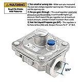 Maxitrol RV48L Natural Gas Pressure