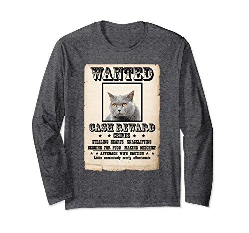 - Unisex British short hair gray mug shot bad Cat Long Sleeve Shirt XL: Dark Heather