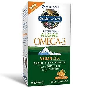 Garden of Life Vegan DHA Supplement - Minami Algae Omega 3 Natural Eye and Brain Function Supplement, 60 Softgels
