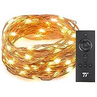 TaoTronics TT-SL005 33 ft 100 LED String RF Remote...