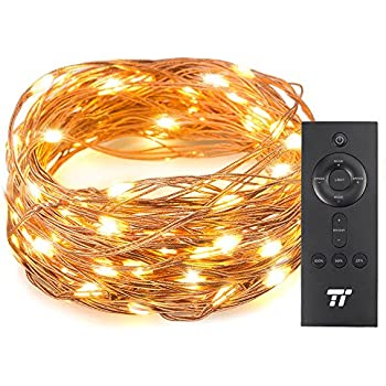 33ft 100 LED String Lights With RF Remote Control, Super Soft Copper Wire?TaoTronics Waterproof Outdoor And Indoor Decorative Lights For Bedroom, Patio, Garden, Gate, Yard, and More
