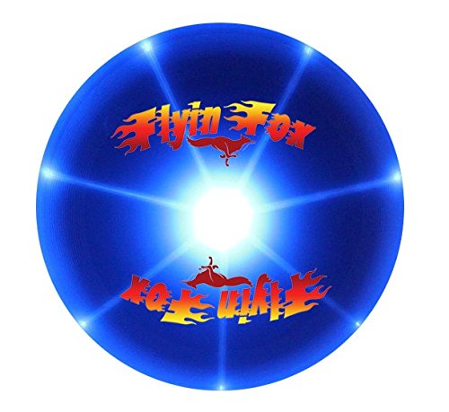 Frisbee Flying Multi Colored Bright Changing