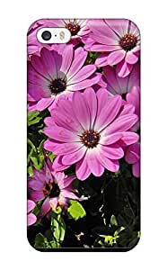 Faddish Phone Summer Flowers Case For Iphone 5/5s / Perfect Case Cover by mcsharks
