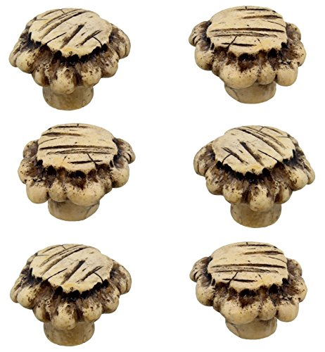 Rainbow Brand Heavy Duty Antler Drawer / Cabinet Pull Knob (6 Pack)