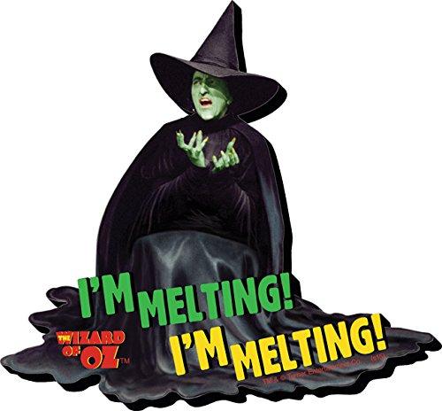 Aquarius Wizard of Oz Melting Funky Chunky Magnet]()