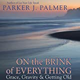 Bargain Audio Book - On the Brink of Everything