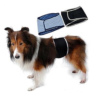 Pañales lavables de perro macho Bailuoni - Lavables pañales ...