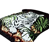 White Tiger Throw Animal Blanket, for Traveling, Hiking, Camping , Full Queen , TV, Cabin, Couch, Bed Blanket. 75''Wx90''H . 3.5LBS
