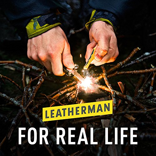 Leatherman - Bit Kit, 21 Double-Ended Bits by LEATHERMAN (Image #9)
