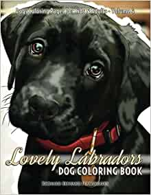 amazoncom lovely labradors dog coloring book dogs