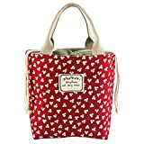 Bidear Insulated Lunch Bags Durable Canvas and Fashionable Pattern Lunch Tote Cooler Box with Cute Drawstring Top for Women Girls Boys Kids (Red)