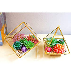 Dandevo 10 Pcs Unpotted Fake Succulent Flowers Plant Assorted Colorful Artificial Succulents Picks in Bulk Realistic Plastic Faux Silk Stems for Bouquet Terrarium Home Decor Large and Small 4
