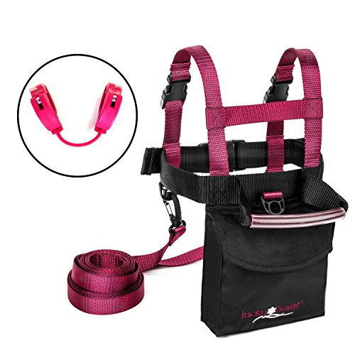 Girls Fall Line (Lucky Bums Toddler and Kids Fall Line Ski Trainer Harness and Easy Wedge Ski Tip Connector Kit, Pink)