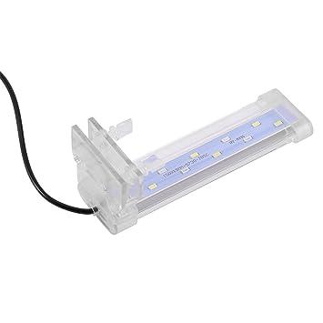 Fdit LED Luz Tanque de Peces Iluminación para Decoración de Acuario Lámpara de Burbujas Resistente Agua Acuario Lámpara de Planta Crece(160#3): Amazon.es: ...
