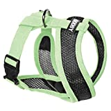 Gooby Choke Free Active X Head-in Synthetic Lambskin Soft Harness for Small Dogs, Green, Small