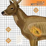 Champion Traps & Targets Deer 25x25-Inch X-Ray Paper Target (Pack of 6)
