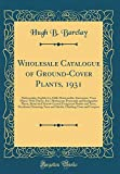 Amazon / Forgotten Books: Wholesale Catalogue of Ground - Cover Plants, 1931 Pachysandra, English Ivy, Halls Honeysuckle, Euonymus, Vinca Minor, Wild Thyme, Etc. Herbaceous . Shrubs and Trees Decideous Flowering T (Hugh B Barclay)
