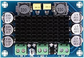 XCSOURCE/® DC 12V-24V TPA3116 D2 100W Mono Kanal Digital Audio verst/ärker Brett f/ür Auto TE633